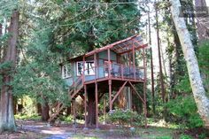 This getaway cedar in Whidbey Island, Washington. | 12 Treehouses You Need To Sleep In Before You Die