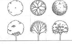 схематичные рисунки растения для ландшафтного проекта: 24 тыс изображений найдено в Яндекс.Картинках