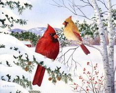 Cardinals And Hemlock Tree at FramedArt.com