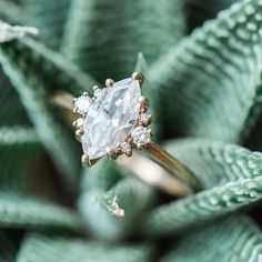 Seriously smitten with this marquise cut #engagementring from @susiesaltzman!  Photo by @ashleyslaterphotography from @bloomtheworkshop