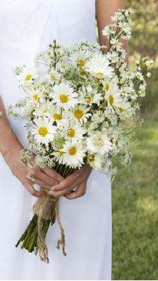 Bouquet: daisy bouquet wrapped in burlap--could do some blue ribbon, too