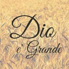 Dio è Grande!!!