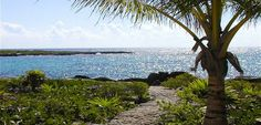 Akumal Vacation rentals, accommodations, reservations: Rental houses,villas,resorts,hotels. 1 hour south of Cancun in Riviera Maya, Mexico.