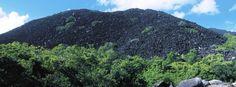 Black Mountain--Kalkajaka National Park, New South Wales, Australia