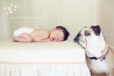Is there anything cuter than babies and a bulldog?  I think not!