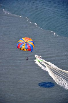 Parasailing is your ticket to a peaceful yet thrilling experience. Soar over Hilton Head Island and you'll see the Lowcountry for miles in every direction. Go solo or fly tandem. Choose how high y. Gulf Coast Beaches, Dolphin Tours, Parasailing, Hilton Head Island, Horseback Riding, Day Trips, Kayaking, Places To Go, Things To Do