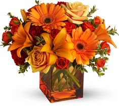 You are able to make your arrangement as elaborate or as easy as you like. These arrangements are excellent for different places in your house like the bathroom, bedroom or workplace. If you would like to make a larger arrangement… Continue Reading → Fall Flowers, Orange Flowers, Love Flowers, Beautiful Flowers, Yellow Roses, Pink Yellow, White Flowers, Fall Wedding Bouquets, Diy Wedding Flowers