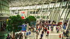 Düsseldorf Airport (DUS) -  nützlichen Infos zum drittgrößten Flughafen Deutschlands