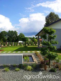 Moja codzienność - ogród Oli - strona 832 - Forum ogrodnicze - Ogrodowisko