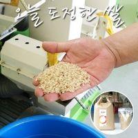 오늘 도정한 쌀 5kg 9분도미+미강가루 서비스, 신동진벼쌀, 운광벼쌀