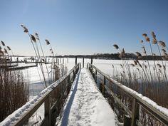 The diverse blend of upland and wetland habitats making up Ninigret make some of…