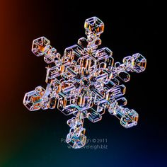 this lady on Flickr takes the most amazing photos of snowflakes every winter.