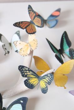 100% realistic. 100% paper. Today seems like a good day for some hand-cut butterflies.