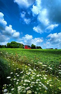 """Lazy Days of Summer""  Horizons by Phil Koch. Lives in Milwaukee, Wisconsin, USA. http://phil-koch.artistwebsites.com https://www.facebook.com/MyHorizons"