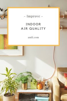 The air inside our homes is likely to be more polluted than the air outside. Dust, fragrances, chemicals (in cleaners) and pets can all decrease your home's air quality.