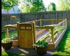 My next veggie garden