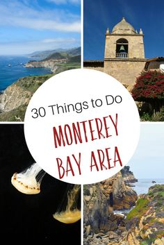 What to do in Monterey Bay Area: Things to do in Monterey, Carmel, Carmel Valley, Big Sur California Places To Visit, Beautiful Places In California, California Travel Guide, Best Beaches To Visit, California Camping, California Vacation, Disneyland California, Cool Places To Visit, California California