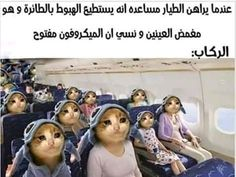 Funny Photo Memes, Funny Picture Jokes, Memes Funny Faces, Cute Memes, Stupid Memes, Funny Relatable Memes, Funny Photos, Funny Jokes, Arabic Memes