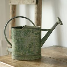 Chippy Green French Watering Can