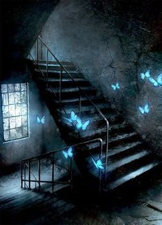 Magical blue butterfly in an abondonned stairs