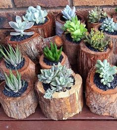 Best garden flower pot design ideas - Page 3 — decoration (Image) Succulent Gardening, Succulents Garden, Garden Pots, Planting Flowers, Garden Crafts, Diy Garden Decor, Garden Projects, Flower Pot Design, Wood Planters