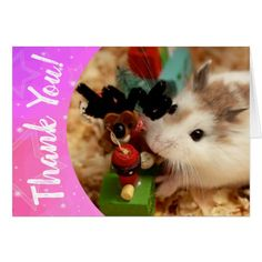 Hammyville - Cute Hamster Thank You Card - fun gifts funny diy customize personal Employee Appreciation Gifts, Volunteer Appreciation, Employee Gifts, Thank You Gifts, Thank You Cards, Roborovski Hamster, Hamster Names, Fluffy Kittens, Cat Tags