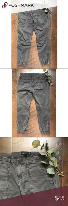 """Sanctuary Anthro Zippered Ankle Cargo Joggers Sanctuary Anthropologie size 27 gray jogger pants. Skinny cargo style. Zippered ankle. EUC. 31"""" waist, 9"""" rise, 25"""" inseam. Fitted elastic ankle. Sanctuary Pants Track Pants & Joggers"""