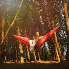 """@Regrann from @bobby_kurn - . Kalo ada yang ngomongin kita di belakang""""di senyumin"""" ajamasih banyak hal lain untk kita urusinmungkin mereka kurang piknik!  . . . . . . Lokasi : Hutan cemara-Pantai Panjang Bengkulu . . . . . #hammock #hammocklife #hammockid #hammockersindonesia #visitbengkulu #instamood #instagram #instadaily #instacool #bengkuluhammockers #hammockon #hammockersid #salamgantung #salamkepompong #follow4follow #hammockbengkulu #bengkuluhammockers #Regrann by…"""