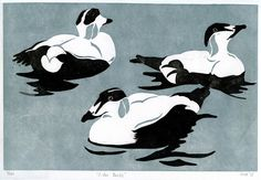 Eider Ducks Gray Blue Handmade Linocut Print