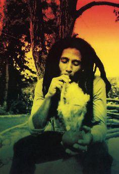 "Bob Marley Art Wall Silk Poster 20x13/"" B14"