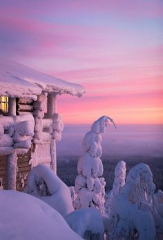 The snow covered trees are amazing at Hotel Iso-Syote - Visiting Finland in Winter: Top 15 Winter Activities in Finland Winter Magic, Winter Snow, Winter Sunset, Winterguard, Beautiful World, Beautiful Places, Winter Schnee, Snow Covered Trees, Ski Holidays