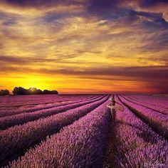 Provence, France (via Beautiful Destinations)
