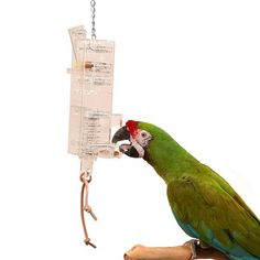 Tug N Slide Foraging Tower Parrot Toy Advance foraging device for large pet birds.