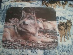 Wolf Mouse Pad - Wolf Resting on Fallen Leaves ... Landscape or Portrait Styles with FREE shipping!  $10