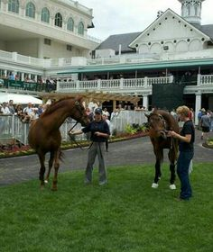 Derby winners Funny Cide and Mine that Bird, together at Churchill Downs.