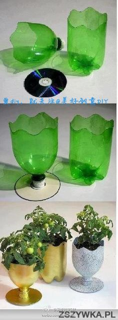 Soda bottles cut and painted to make pretty functional plant holders