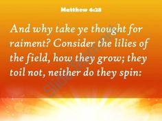 matthew 6 28 the flowers of the field powerpoint church sermon Slide05http://www.slideteam.net