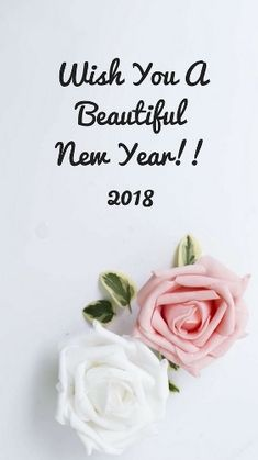 happy new year funny happy new year pictures happy new years eve happy