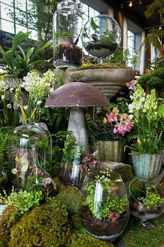 Promising to do for gardening what Urban Outfitters did for street style, Terrain is opening its second garden and home store in Westport. Garden Shop, Garden Art, Home And Garden, Indoor Garden, Indoor Plants, Outdoor Gardens, Garden Center Displays, Decoration Plante, Plantation