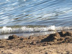AT THE BEACH .. by Heli Aarniranta on ARTwanted Earth From Space, Canon Powershot, Helsinki, Planet Earth, Digital Photography, Animal Kingdom, Finland, Planets, Waves