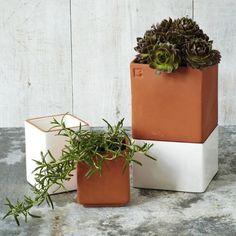 Self watering cult pots ; Gardenista