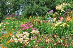 Crossview Gardens vt