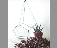 by TheDeadPheasant Handmade geometric terrarium. Soldered stained glass modern planter perfect for succulents or other flora. Abstract, minimalist home decor great for living room, office, or library.