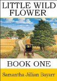 Sunday's Amish Sale Kindle Books 01/26/2014 - Christian Book Finds