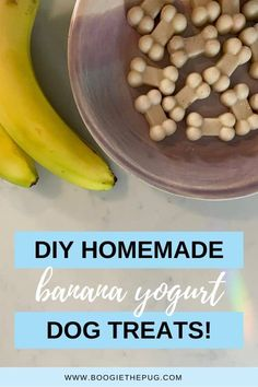 Just three ingredients and a little wait time while they freeze and you've got yourself some homemade treats that even you can nibble on. Homemade Dog Treats, Healthy Dog Treats, Doggie Treats, Dog Treat Recipes, Dog Food Recipes, Diabetic Dog Food, Frozen Dog Treats, Make Dog Food, Dog Diet