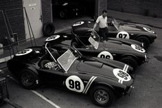 Carroll Shelby: Cobra Creator and American Racing Legend. Dave Friedman took this photo from the Cobra teams car transporter. Ac Cobra, King Cobra, Carroll Shelby, Ford Mustang, Ford Gt, Shelby Mustang, Shelby Gt 500, Shelby Car, Can Am