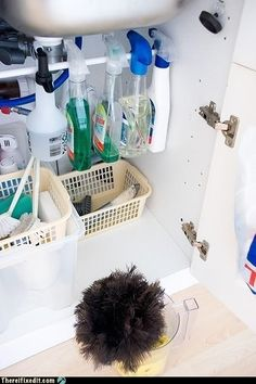 I love this idea for organizing under your sink