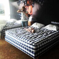 """Un altro scatto che ha partecipato al  concorso """"Vinci un letto Hästens """" da Galliano Habitat a None Torino"""