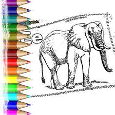 Ausmalbilder Tier ABC   Realistische Tierbilder Ausmalen mit Anfangsbuchstaben des Alphabets. Vom A wie Affe bis Z wie Ziege. Malvorlagen Tiere zum Ausmalen