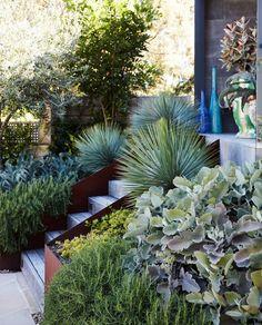 Retaining Wall Design, Retaining Walls, Boffi, Raised Planter, Planter Beds, Garden Landscape Design, Landscape Architecture, Exotic Plants, Front Yard Landscaping